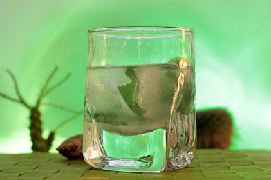 Voir la recette du cocktail Agave Julep