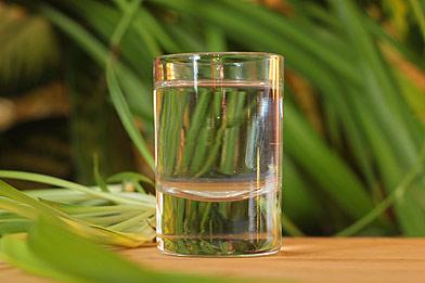 Voir la recette du cocktail Cactus flower